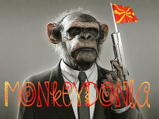 monkey_war1
