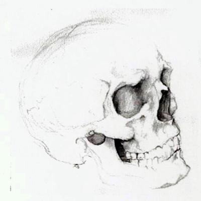 Skull_SketchPad_Web