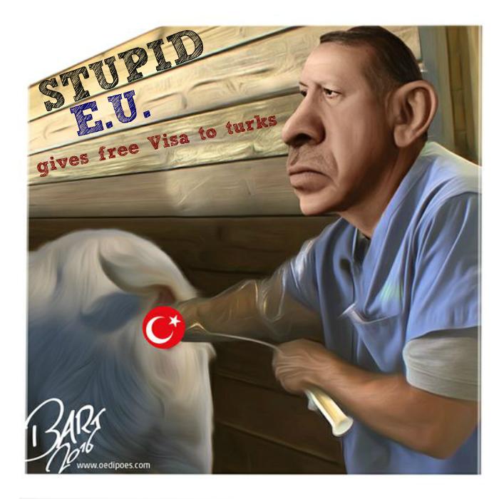 the_long_arm_of_erdogan__bart_van_leeuwen